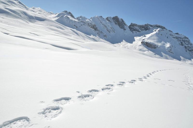 Météo des neiges