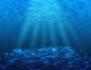 Lumière sur l'océan