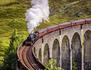 Trains touristiques : à toute vapeur